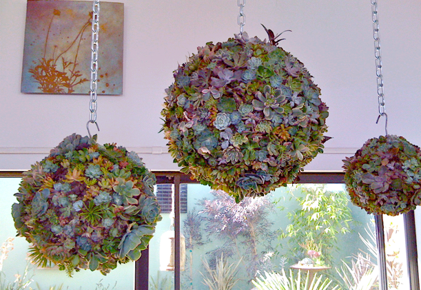 These Dig Gardens Succulent Orb Forms ($15-$75) put a fresh spin on traditional topiaries – perfect for a hanging indoor or outdoor garden.
