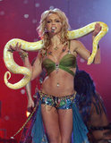Britney Spears performed with a snake at the 2001 MTV Video Music Awards.