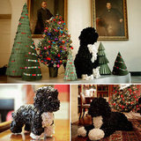 Bo, Bo, Bo: Merry Christmas From the White House!