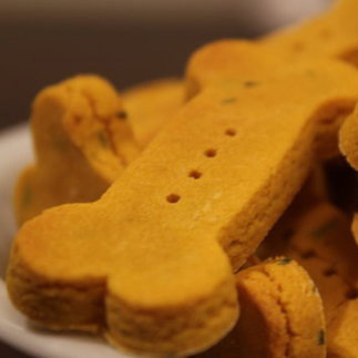 Wheat-Free Pumpkin Dog Biscuit Recipe