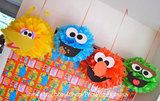 Party Decorations: Sesame Street Pom Poms