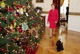 Barney and Spot join former first lady Laura Bush on a preview of the White House holiday decorations in 2002. Source: Getty Images