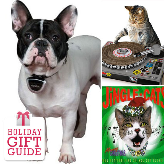 Last-Minute Gifts For Your Faithful Companion