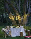 Loop lights around a chandelier for an elegant outdoor dinner party. Source