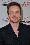 Aaron Paul at AFI Awards.
