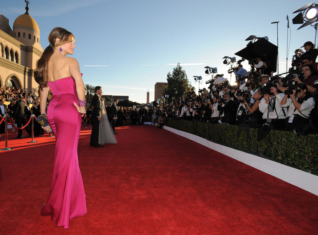 Sofia Vergara posed on the red carpet.