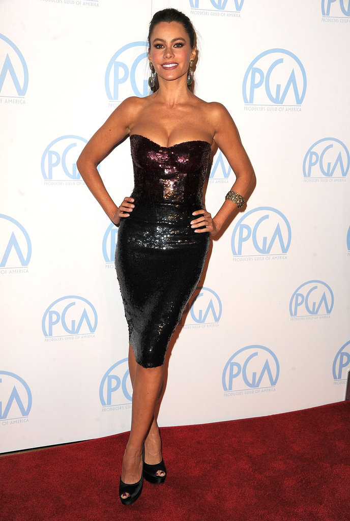 Sofia Vergara sparkled on the red carpet in a body-conscious ombré-tinged Monique Lhuillier Pre-Fall '12 dress.