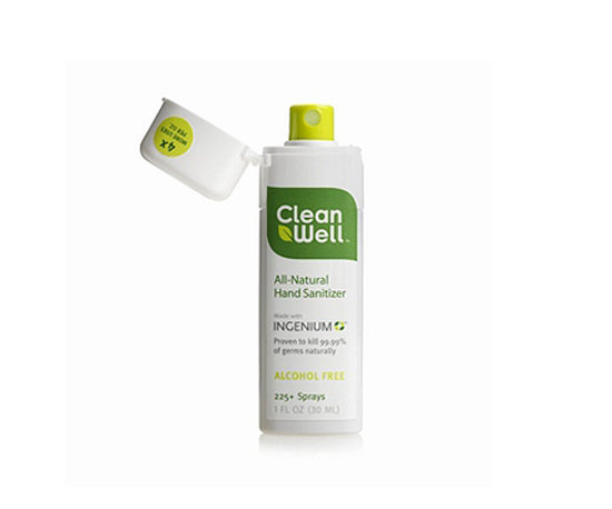 CleanWell Hand Sanitizing Spray