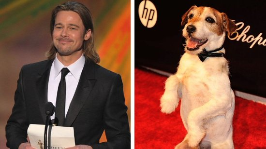 Video: The Artist Star Says Uggie the Dog Is Taking a Cue From Brad Pitt