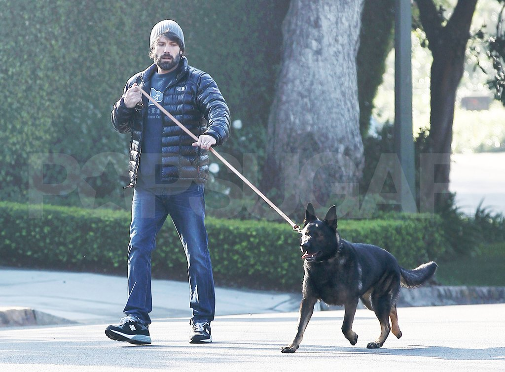 Ben Affleck was in charge of dog-walking duties.