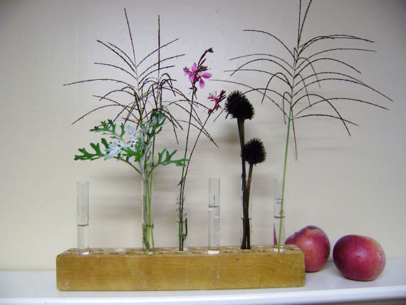 Wooden Base and Test Tube Vases ($28)