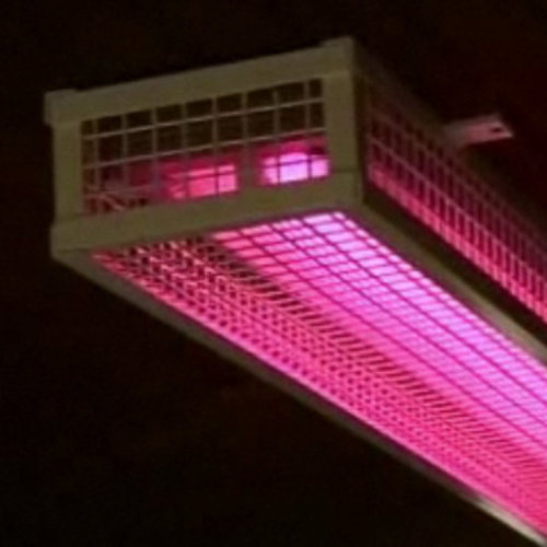 Welsh Cops Consider Acne-Highlighting Pink Light