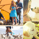 Lauren Conrad Comes Down With a Case of Puppy Love on Set, and Possibly, Real Life