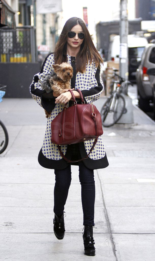 Miranda Kerr walks with her dog Frankie in NYC.