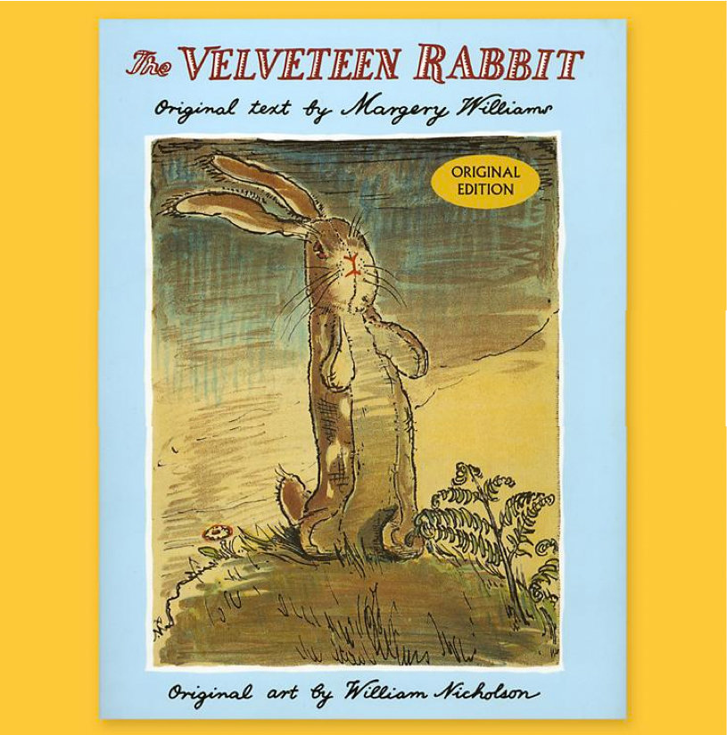 The Velveteen Rabbit ($14)