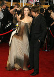 Angelina Jolie wore an ombre dress to the 14th Annual Screen Actors Guild Awards in January 2008.