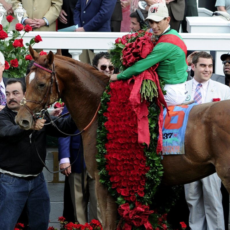 Pictures of the 138th Kentucky Derby Horses in 2012