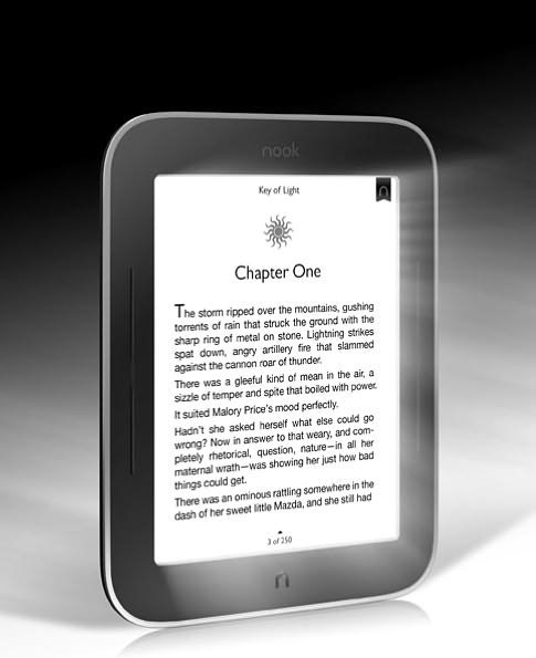 An Ereader ($99 and up)