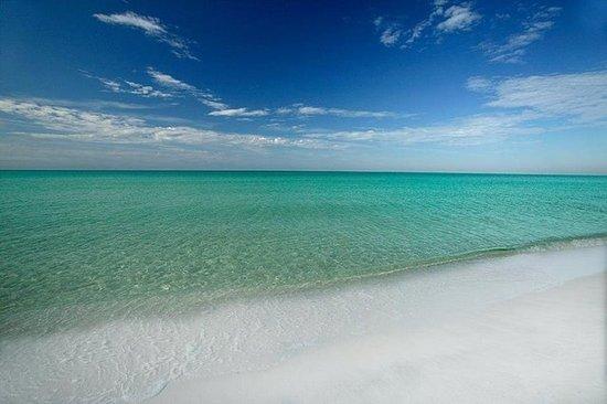 Best Family Beaches On Gulf Coast Florida