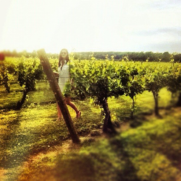 Making the Grape
