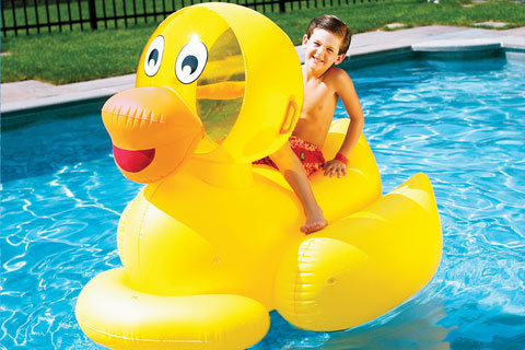 ToySplash Giant Ducky ($30)
