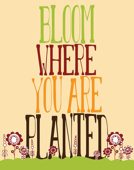 I'm loving the tall letters and cute flowers on this Bloom Where You Are Planted Print ($21).