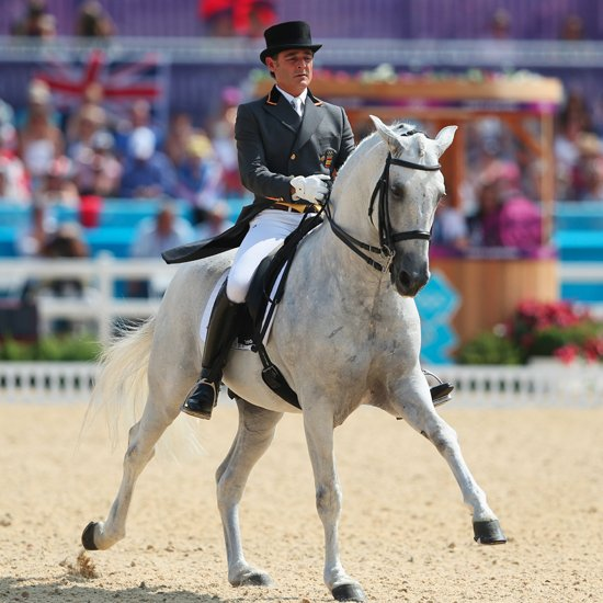 Sporty Steeds: Olympic Sport Horses From A to Z