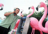 Ben Affleck took a call from a pay phone in his 1999 release Forces of Nature.
