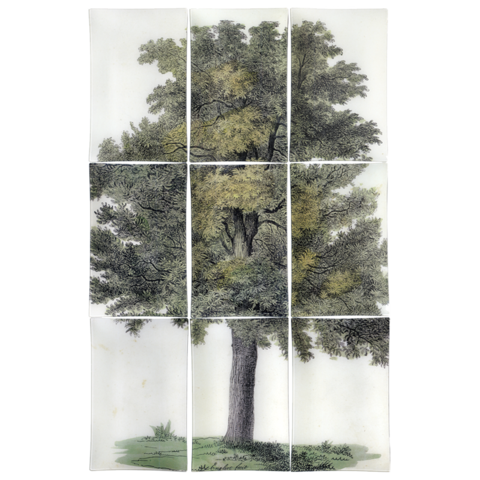 This nine-piece decoupage makes for a grand piece of art when arranged together, and the stately old tree is a timeless look. John Derian Oak Tree ($1,700)