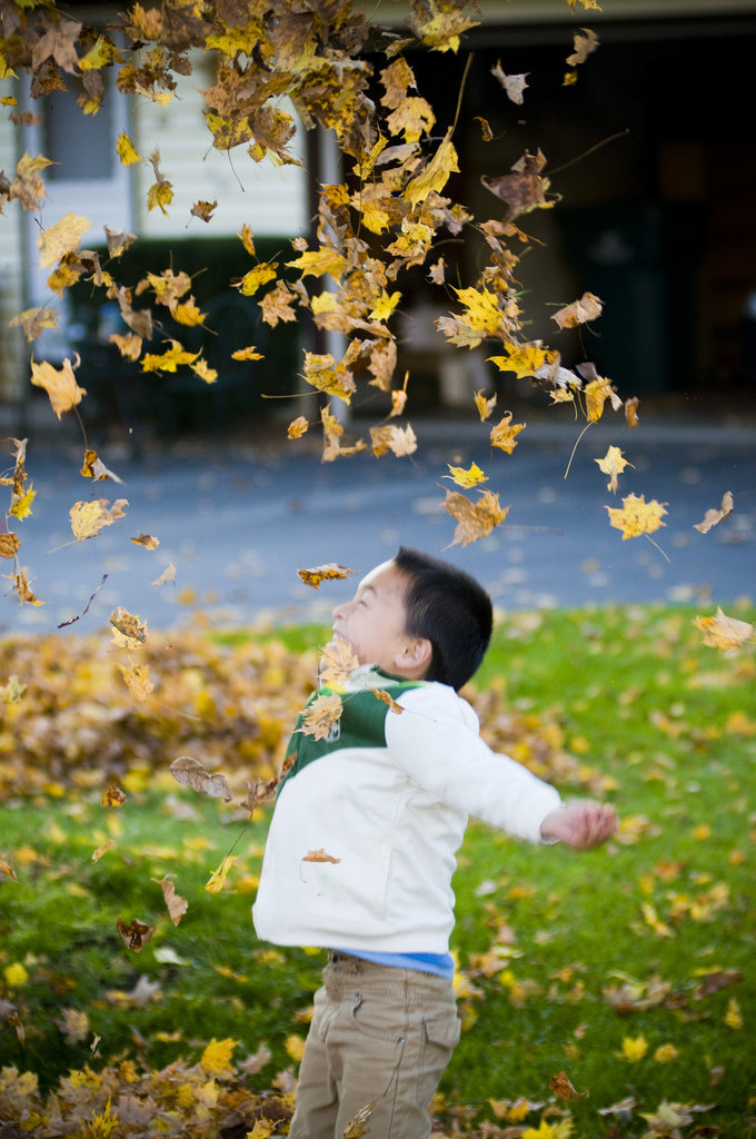 Slow-Motion Leaf Toss