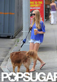 Amanda Seyfried had her dog on a leash.