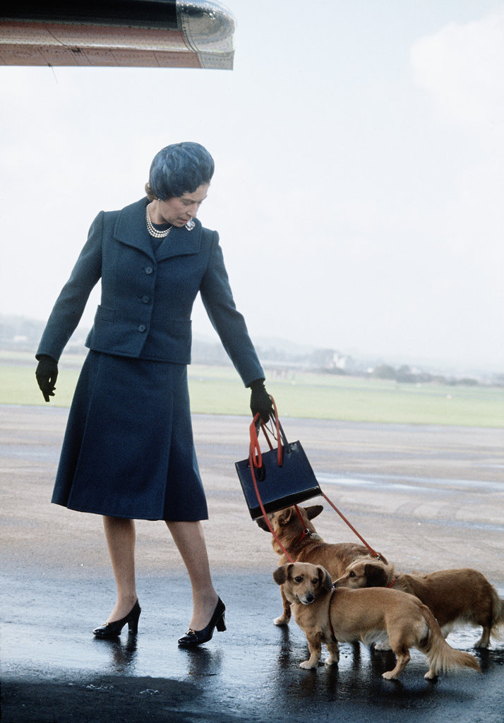 Always one to travel in style, the queen toted an elegant handbag and a few of her favorite dogs on holiday in Scotland in 1971.
