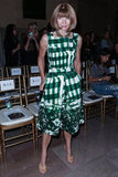 Anna Wintour donned a vibrant kelly-green print at Marchesa.