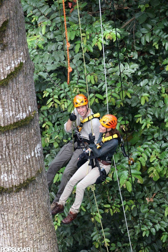 Prince William and Kate Scale a 130-Foot Tree in High Spirits
