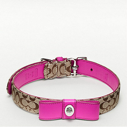 Coach Signature C Turnlock Bow Collar