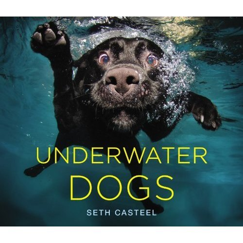We can't wait for Seth Casteel's Underwater Dogs book ($20) debuting on Oct. 23.