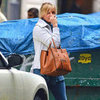 Cameron Diaz Carrying Cline Bag in NYC | Pictures