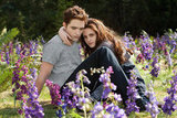 Edward and Bella From Breaking Dawn Part 2