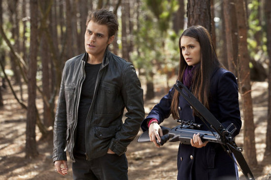 Stefan and Elena From The Vampire Diaries