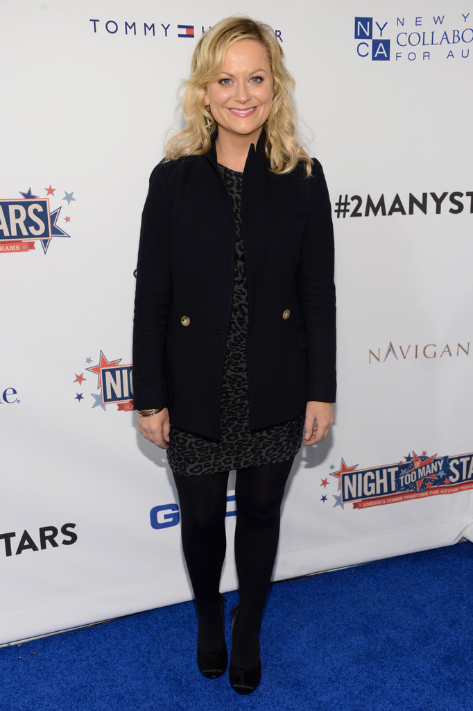 Amy Poehler posed for photos at the Night of To Many Stars benefit in NYC