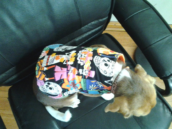 Day of the Dead Dog Coat