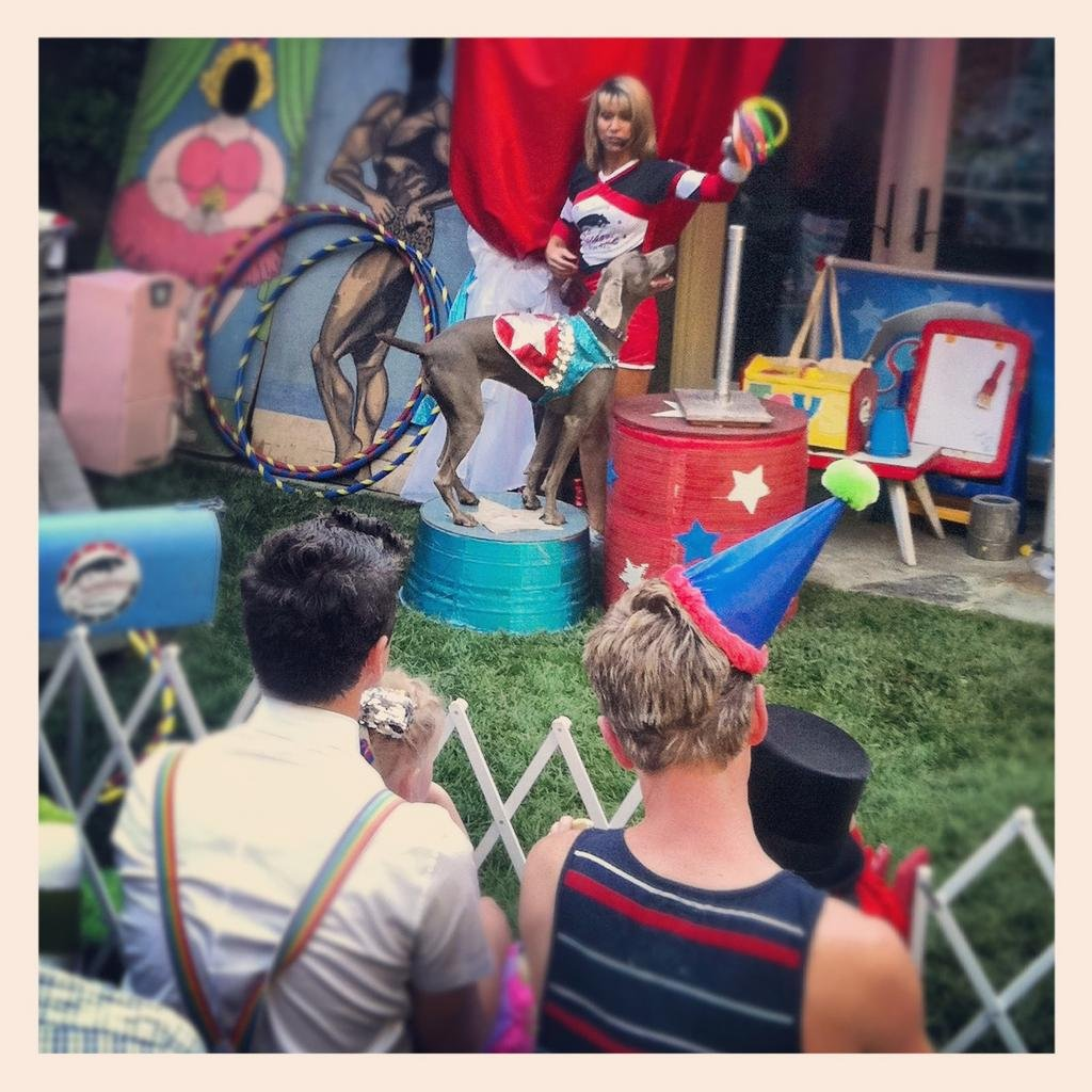 Neil Patrick Harris and David Burtka celebrated Gideon and Harper's birthday with a real three-ring circus. Source: Twitter user ActuallyNPH