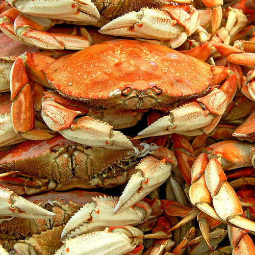 How to Buy and Prep Seafood