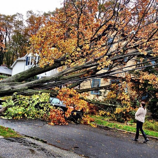 How They Saw the Storm: Fashion People's Pictures of Sandy