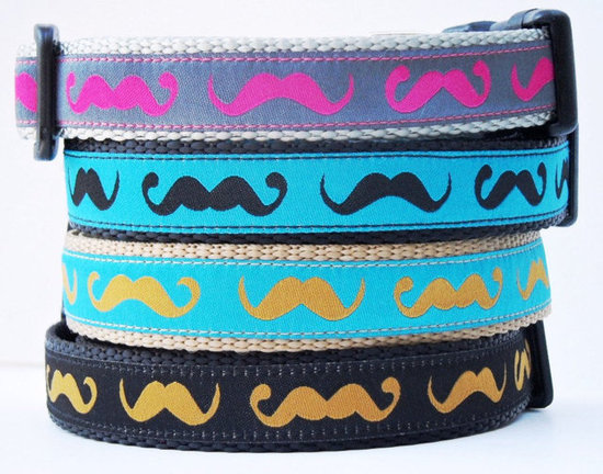 Handlebar Mustache Dog Collar