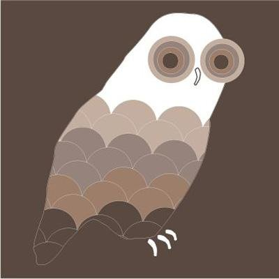 Avalisa Owl Stretched Print 