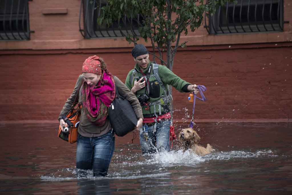 A couple and their dogs struggled through the flooded streets of Hoboken, NJ.