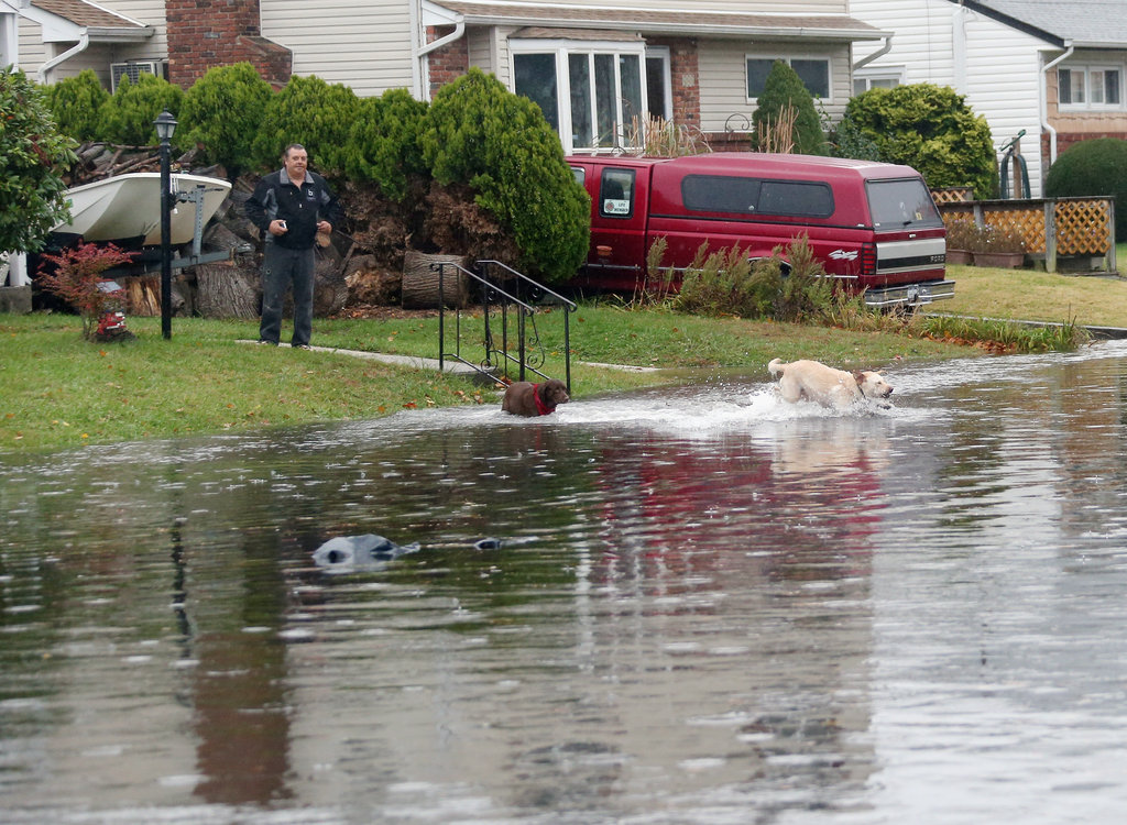 This man's pups made the best of a gloomy situation by taking a dip in the river that used to be a street in Freeport, NY.