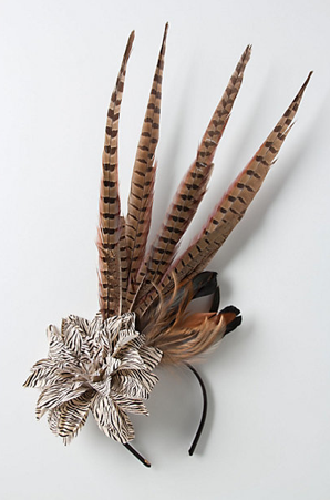 Birds of Prey Fascinator