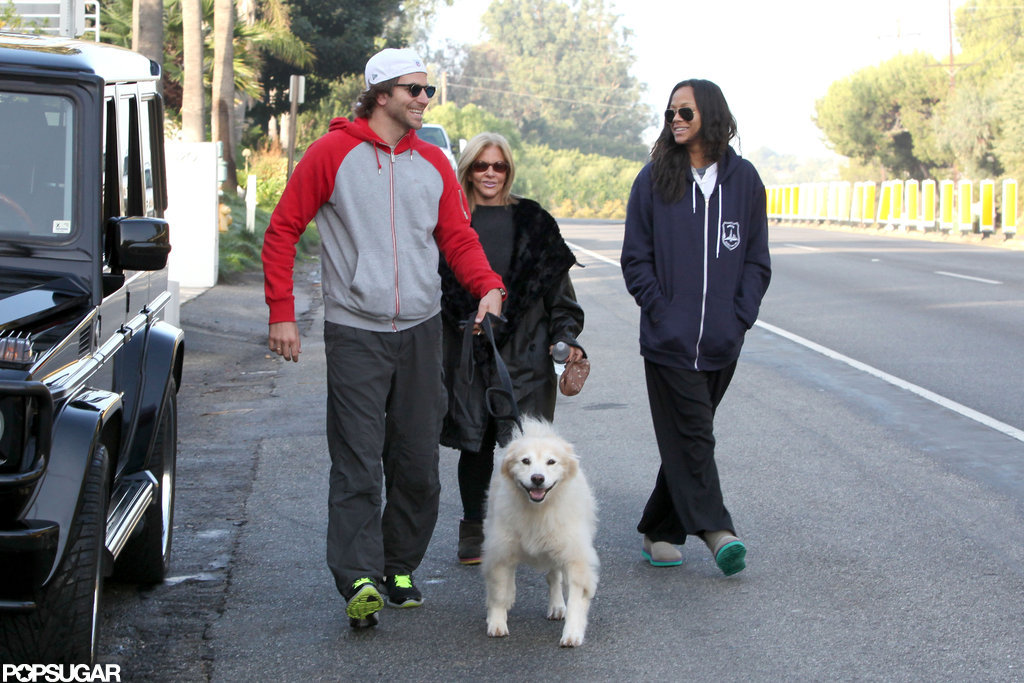Bradley Cooper and Zoe Saldana walked a dog with Bradley's mom.